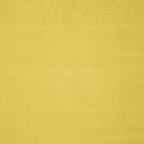 0559-18-PIGMENT-MIMOSA
