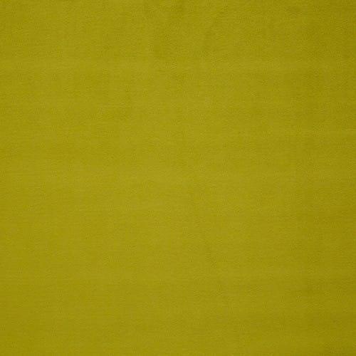 0559-19-PIGMENT-TILLEUL