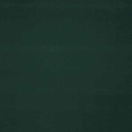 0559-22-PIGMENT-SAPIN